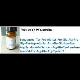 Peptide YY, PYY, porcine