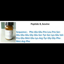 Peptide B, bovine