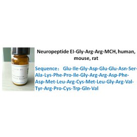 Neuropeptide EI-Gly-Arg-Arg-MCH, human, mouse, rat
