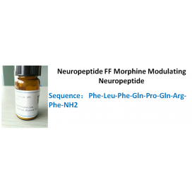 Neuropeptide FF Morphine Modulating Neuropeptide