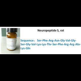 Neuropeptide S, rat