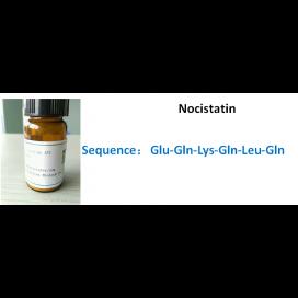 Nocistatin