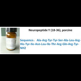Neuropeptide Y (18-36), porcine