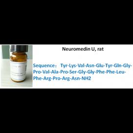 Neuromedin U, rat