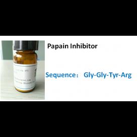 Papain Inhibitor