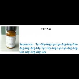 TAT 2-4