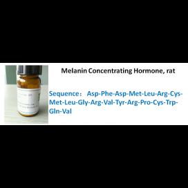 Melanin Concentrating Hormone, rat
