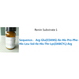Renin Substrate 1