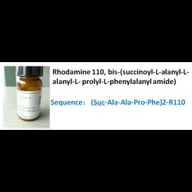 Rhodamine 110, bis-(succinoyl-L-alanyl-L-alanyl-L- prolyl-L-phenylalanyl amide)